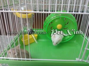 Trọn bộ combo hamster