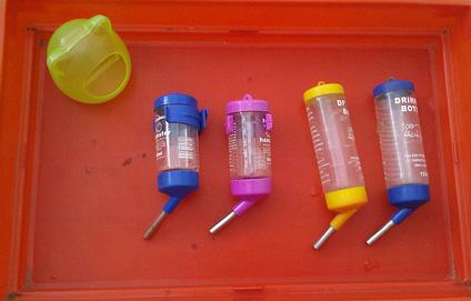 Bình nước sử dụng trong chuồng nuôi