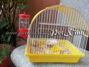 Lồng nuôi Hamster