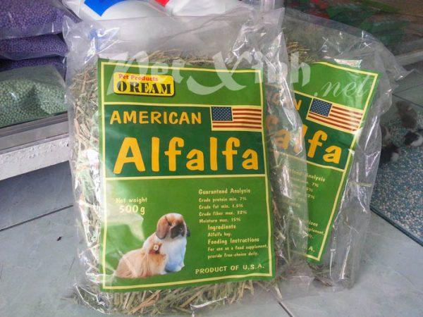cỏ khô alfalfa thức ăn cho thỏ và bọ ú lông xù guinea pig