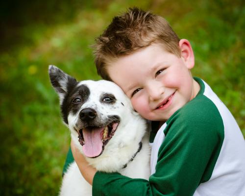 Tại sao nên cho trẻ em nuôi thú cưng