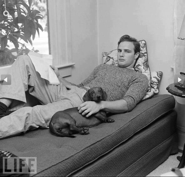 Brando và chú chó dachshund của ông