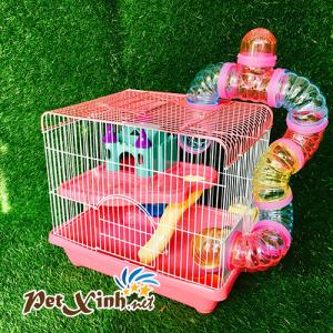Nên chọn lồng cho Hamster như thế nào ? 10