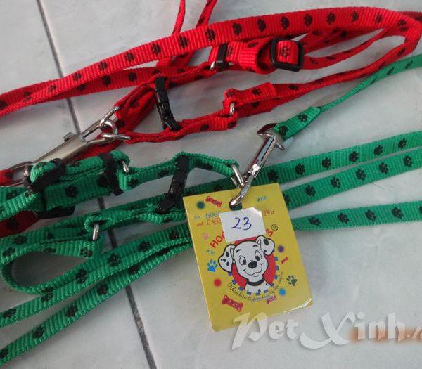 PetXinh - shop thú cưng uy tín Gò Vấp, Tp.HCM 43