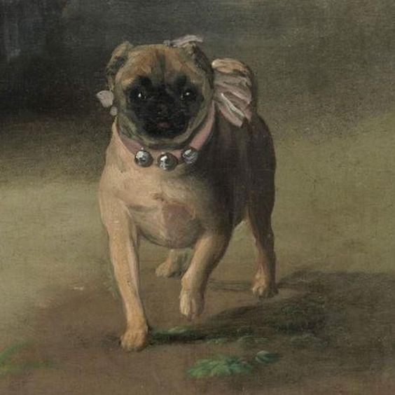 hội họa chó pug