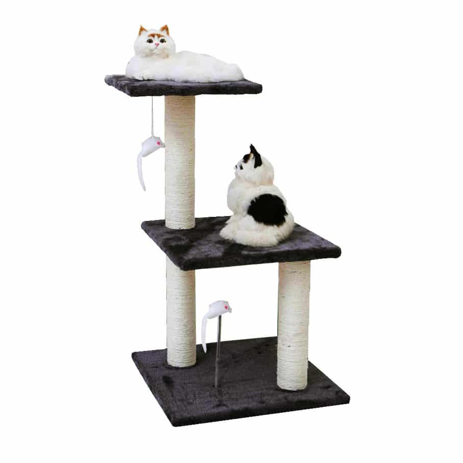 bậc tam cấp cho mèo