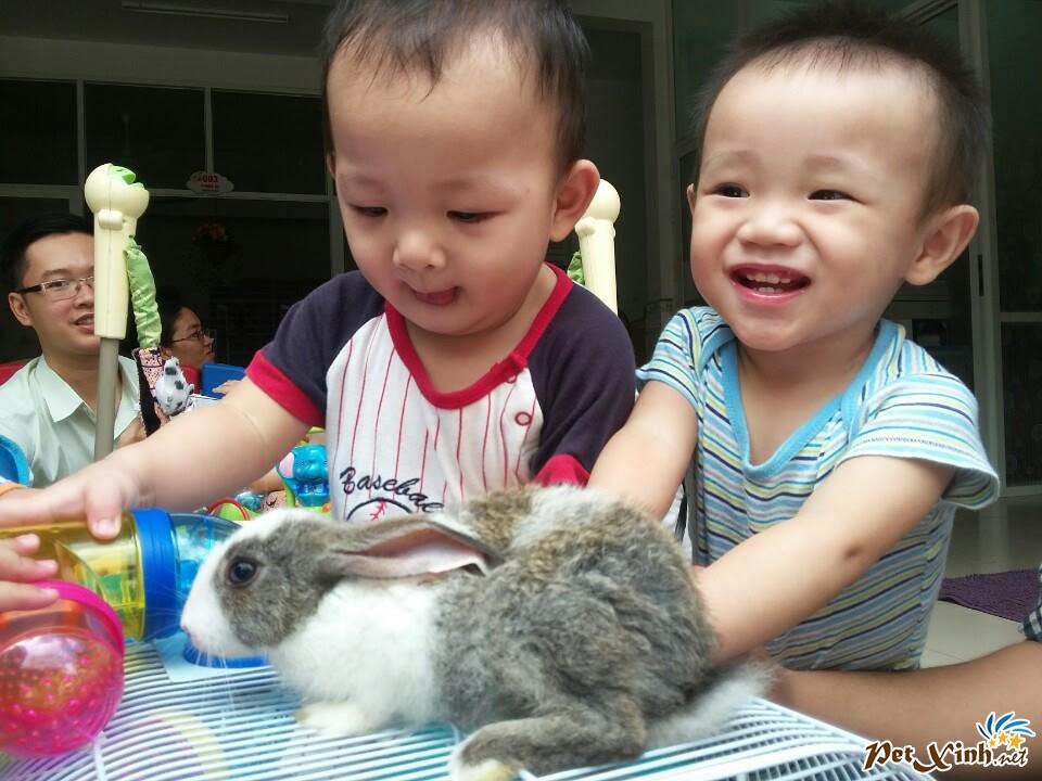 PetXinh.net đi thăm và tặng quà cho trẻ em mồ côi 8