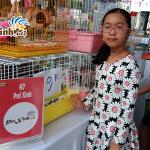 PetXinh tại hội chợ thú cưng Lozi 7