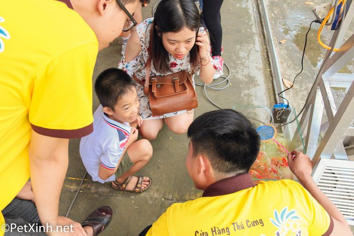 PetXinh tại hội chợ thú cưng Lozi 13