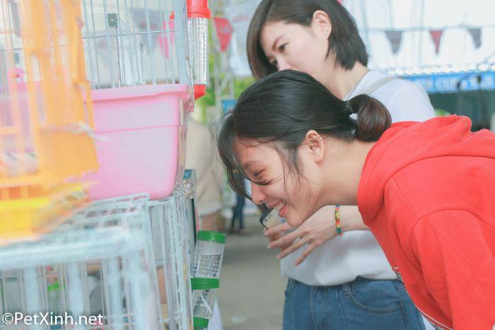 PetXinh tại hội chợ thú cưng Lozi 3
