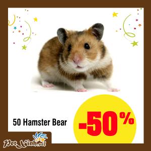 hamster petxinh tân phú
