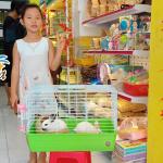 Khai trương chi nhánh PetXinh Tân Phú 19