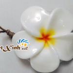 xà bông trái cây handmade thái lan