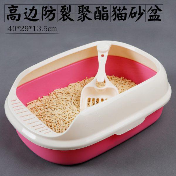 PetXinh - shop thú cưng uy tín Gò Vấp, Tp.HCM 42