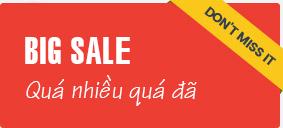 PetXinh - shop thú cưng uy tín Gò Vấp, Tp.HCM 23
