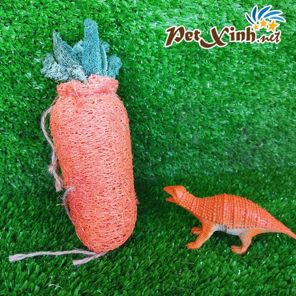 Sơ mướp hình cà rốt