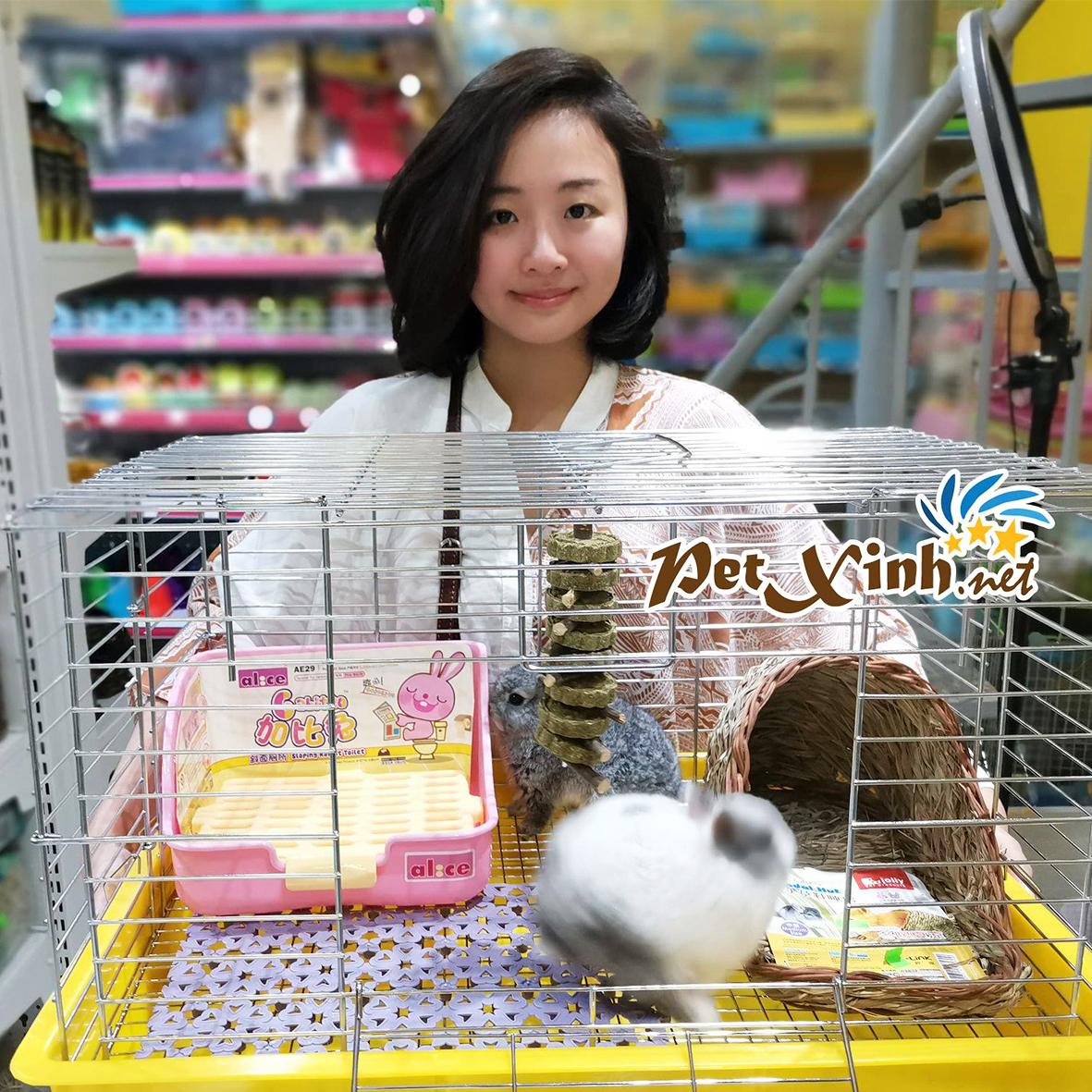 PetXinh - shop thú cưng uy tín Gò Vấp, Tp.HCM 35