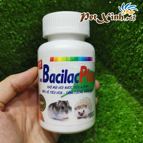 Tăng cường miễn dịch BacilacPlus