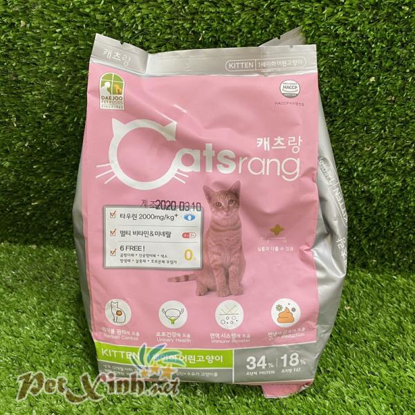 Catsrang Kitten