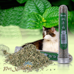 Cỏ mèo catnip Hahale