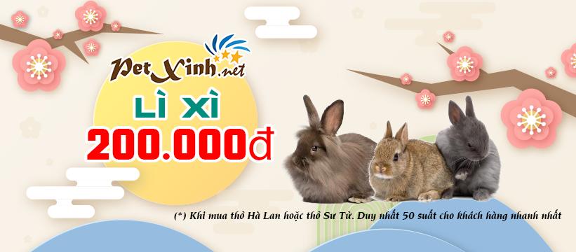 """Lộc đầu năm """"Lì Xì 200.000đ"""" khi mua thỏ Sư Tử hoặc thỏ Hà Lan 1"""
