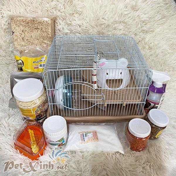 Combo hamster nhà mèo